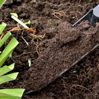 how-to-increase-soil-fertility-effective-microfertilizers